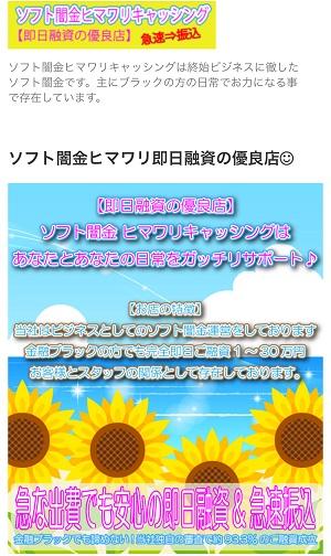 ソフト闇金ヒマワリキャッシングのホームページ画像